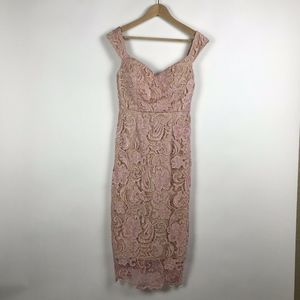 Hello Molly Pink Nude Lace Wiggle Dress Size 10
